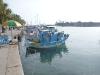 funny-fishing-boats