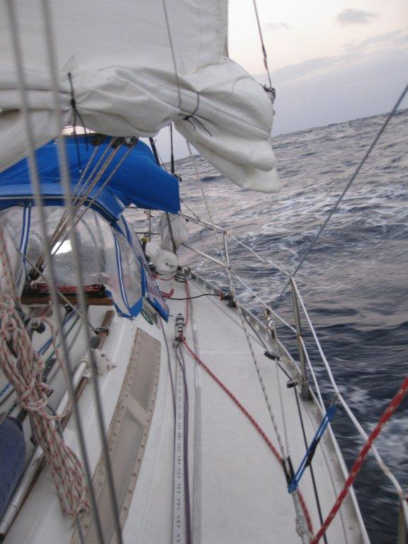 sail slick