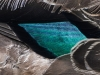 birds-0303