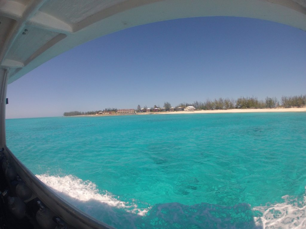 from the dive boat