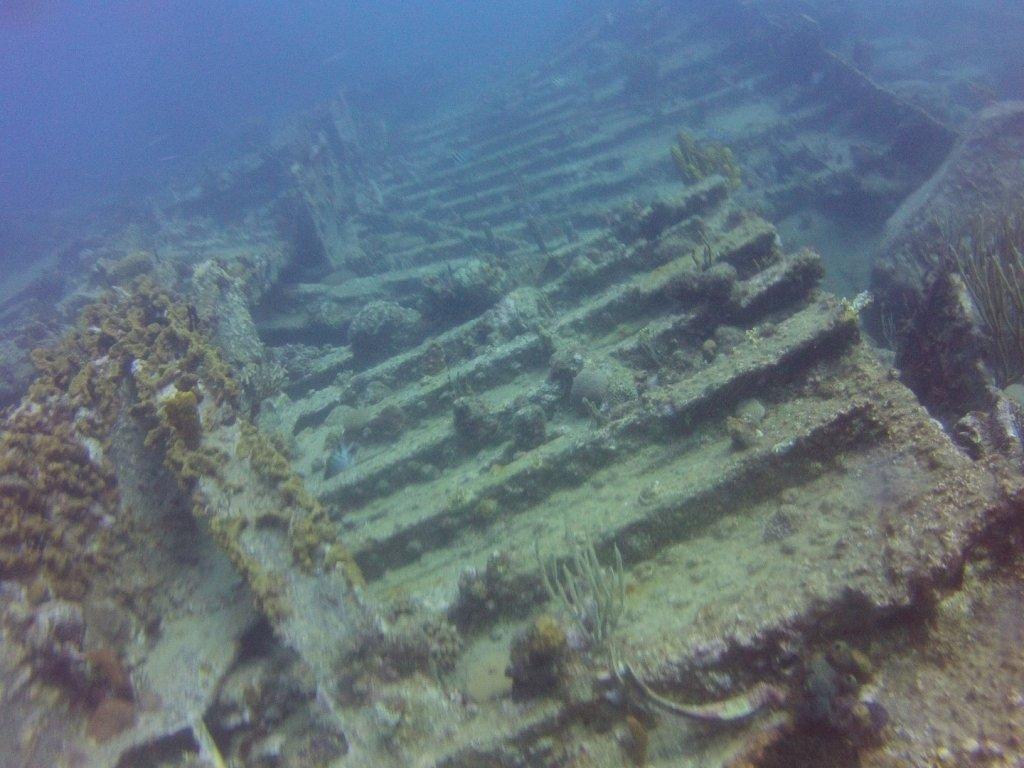 diving (23)