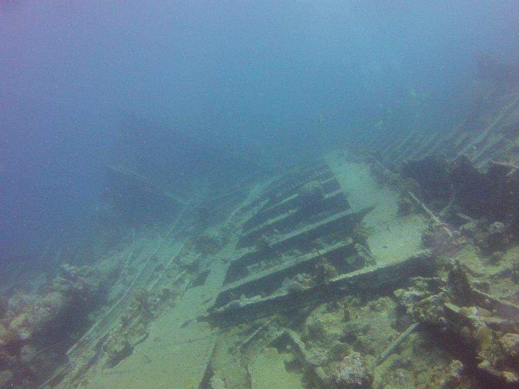diving (25)