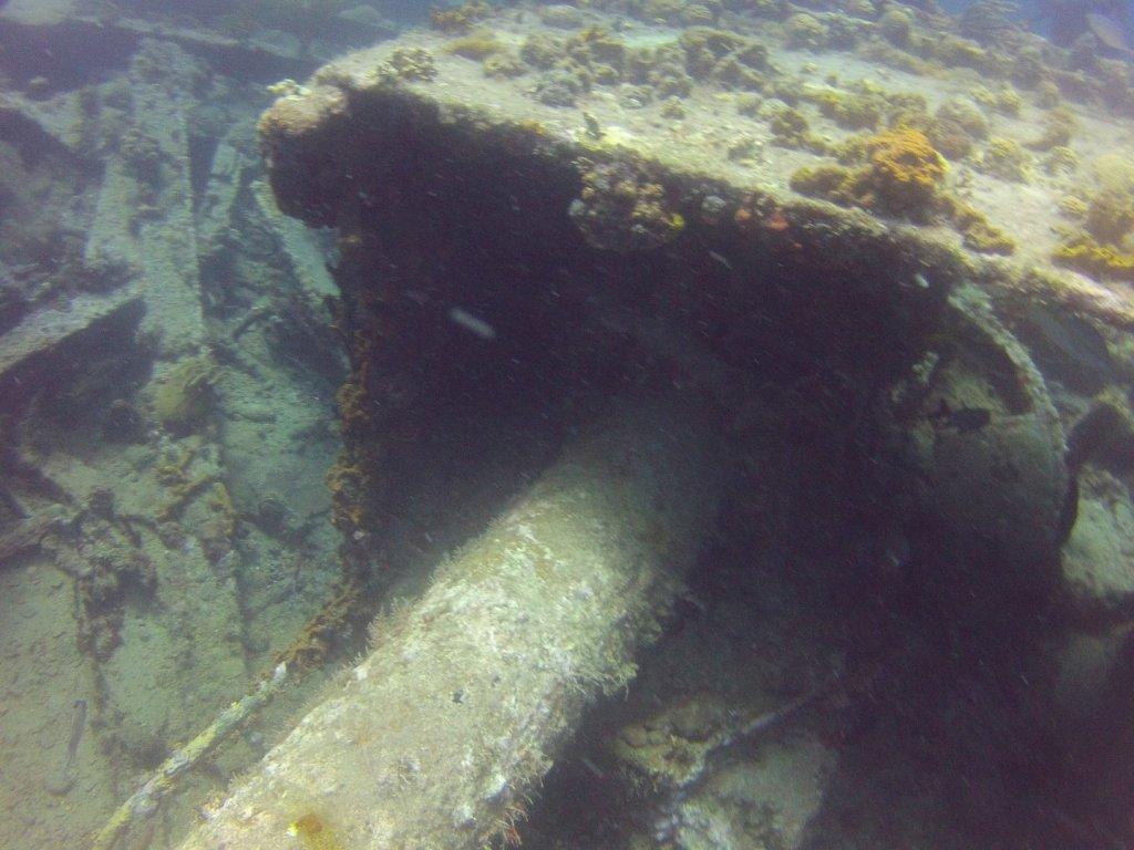 diving (34)