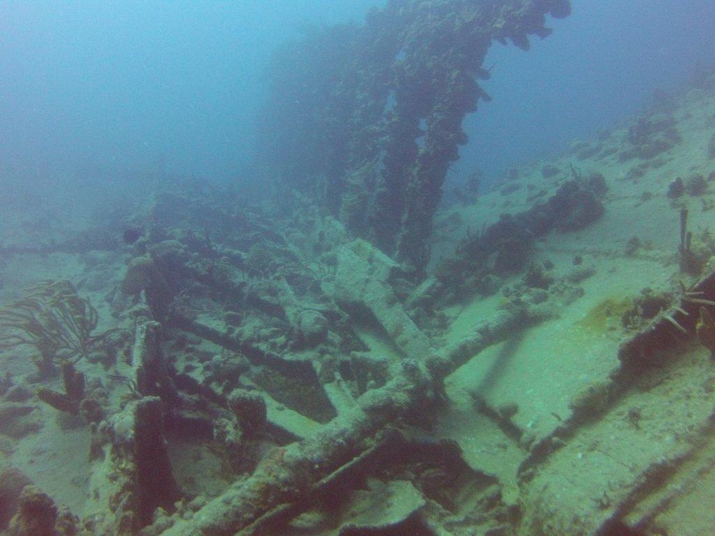 diving (8)
