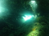 diving (31)