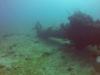 diving (4)