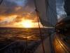 last-pacific-sunset