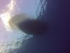 diving (63)