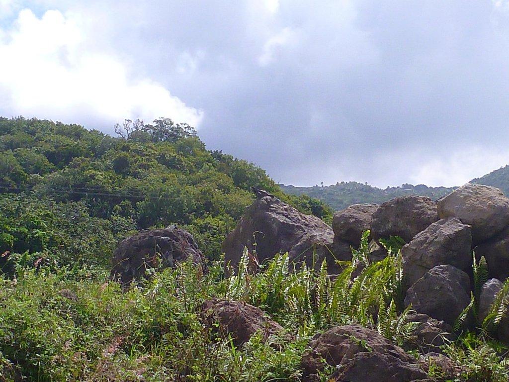 rocks deposited