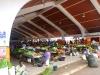 best-vegitable-market-ever