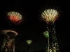 supertrees-lumines
