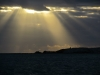 Capustular rays!