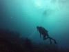 diving (29)