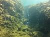diving (9) fumerols