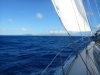 nice sail in